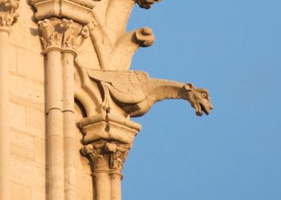 Notre Dame - Gargoyles 1