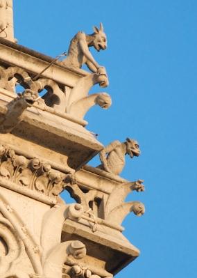 Notre Dame - Gargoyles 2