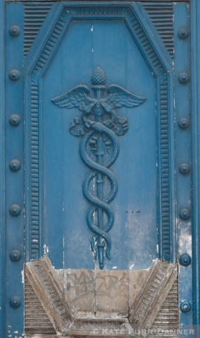 Colored Door - Blue Caduceus Detail
