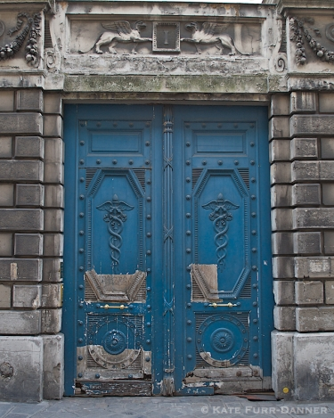 Colored Door - Blue Caduceus