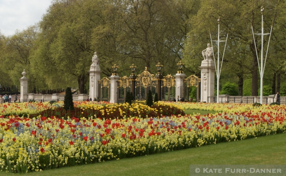 Gardens And Gates Around Buckingham Palace