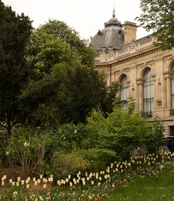 Grand Palais Tulips 2