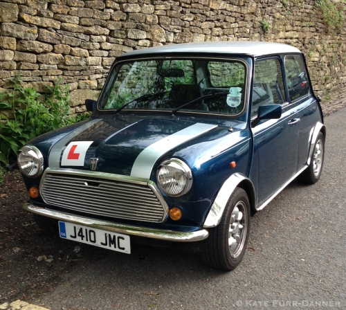 Cotswolds Mini