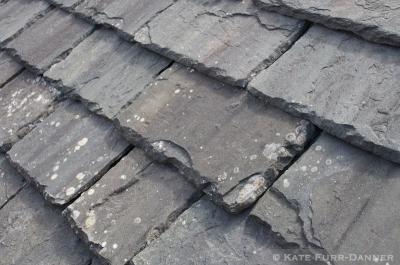 Doune Castle Roof Tiles