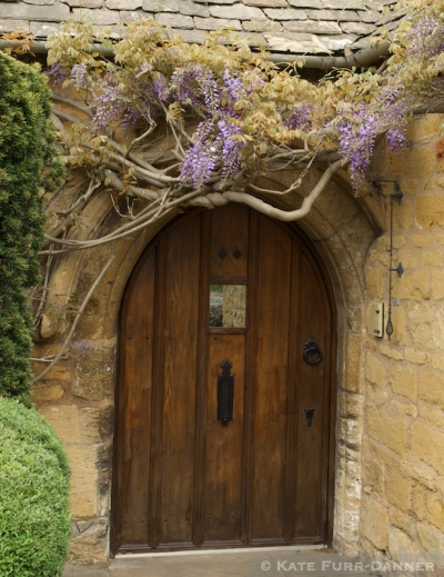 Arched Door And Wisteria