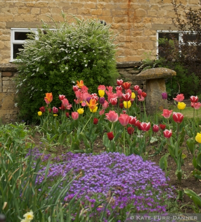 Flowers Chipping Campden
