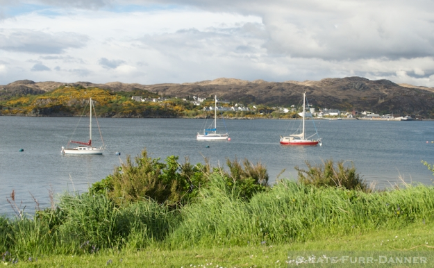 Sailboats near the Skye Bridge