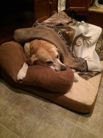Tired Henry